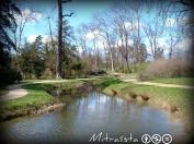 Un plácido riachuelo, bordeado de juncos, esparteras y narcisos presumidos, mirándose en el agua; un bosquecillo ligero por el que serpentea un sendero... el típico jardín inglés donde la mano del hombre imita a la naturaleza.
