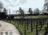 Hay viñedos detrás de la torre Malborough. Suben montados en sus espalderas, por una loma cruzada por un sendero que lleva a la granja. ¿De ellos se saca buen vino? Y qué más da, el caso es que se saca un vino muy caro, para satisfacción de los snobs, como de los viñedos de Montmartre.