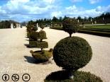 """Naturaleza hecha arte, arte hecho historia... Ser jardinero en Versalles debe ser como ser el restaurador de """"La Carga de los Mamelucos"""" de Goya."""